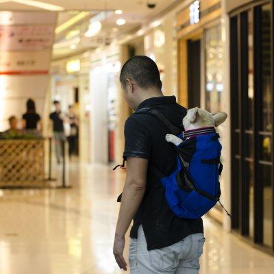 Dog Bag Carrier Pet Dog Backpack